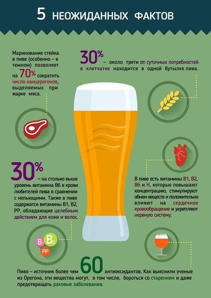 5 неожиданных фактов о пользе пива