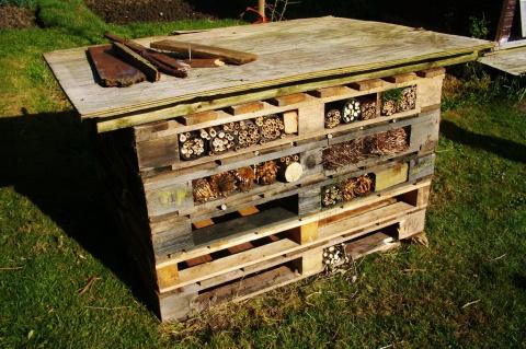 Отели для насекомых: чтоб под каждым им кустом был готов и стол и дом