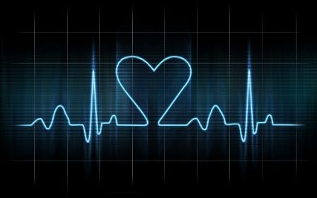 Тренировки сердечного пульса (взаимосвязь физиологических процессов)
