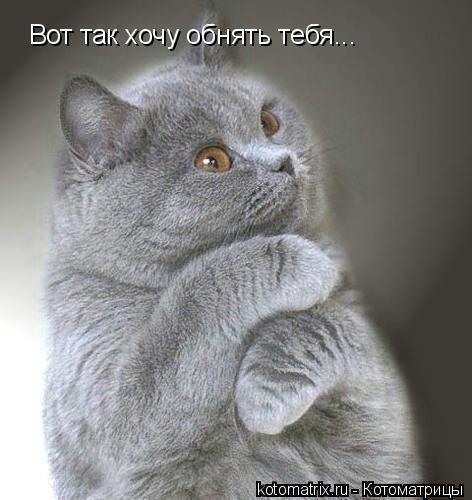 Дина Аринова