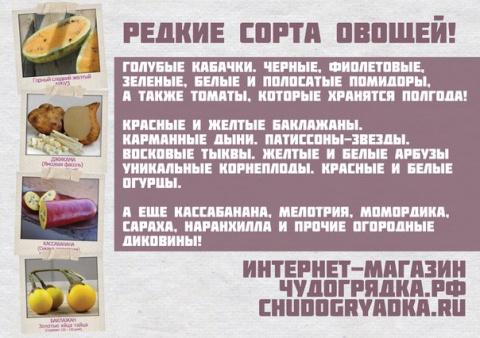 15 плюсов интернет-магазина чудогрядка.рф