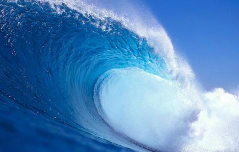 Серфинг ради Visa