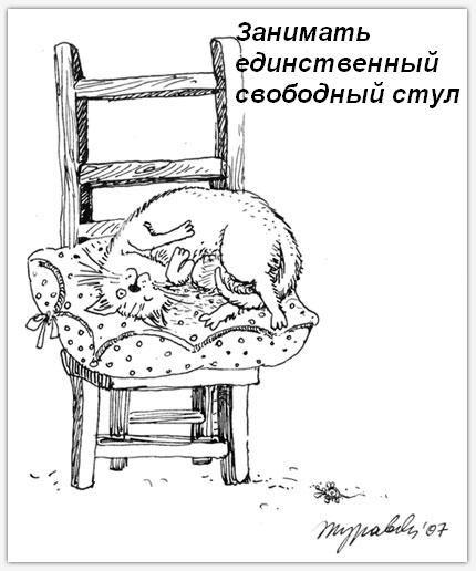 Поднимаем настроение. Обязанности кота по дому