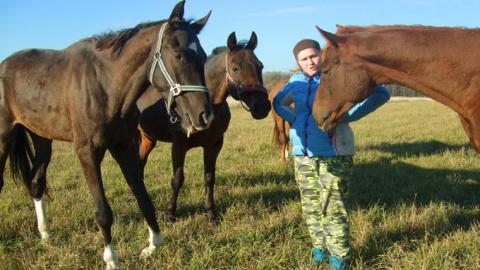 Когда боль ближнего важней комфорта, пусть даже этот ближний - лошадь