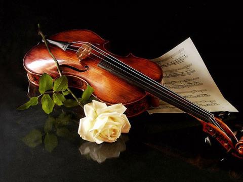 Музыка жизни.