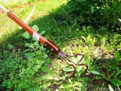 Самый эффективный метод борьбы с сорняками
