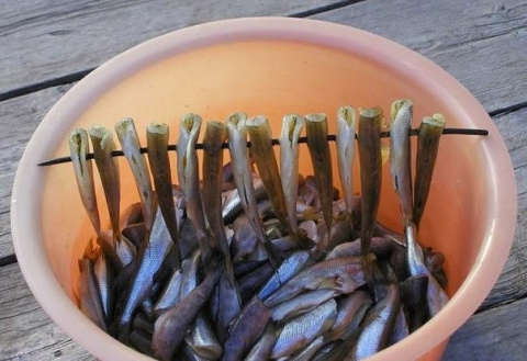 Копченая рыба без коптильни
