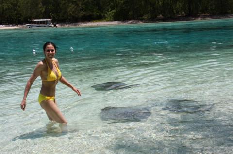 Скаты. Первая встреча.  Муреа, Французская Полинезия. Видео