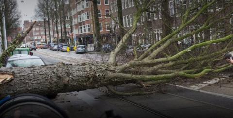 В Нидерландах ветер срывает …