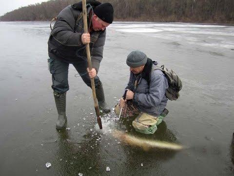 Мотивация к рыбалке ЗИМОЙ НА ЖЕРЛИЦЫ
