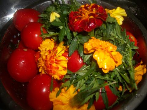 Помидоры с бархатцами,помидоры с черемухой , помидоры с морковной ботвой ,советы из комментов.