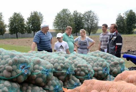Бульба мастер класс Александра Лукашенко на фазенде в Дроздах