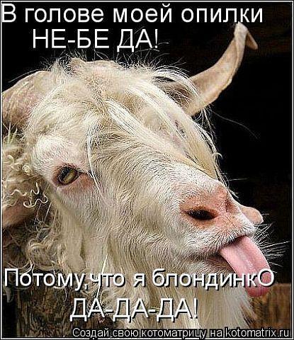 или тебя или ты текст: