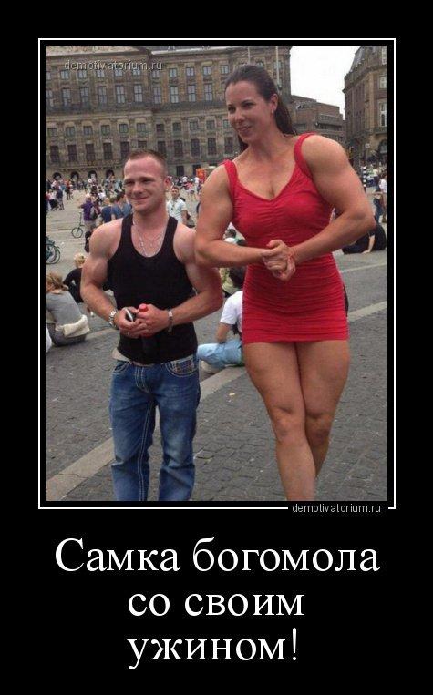 Новые демотиваторы на Юморин…