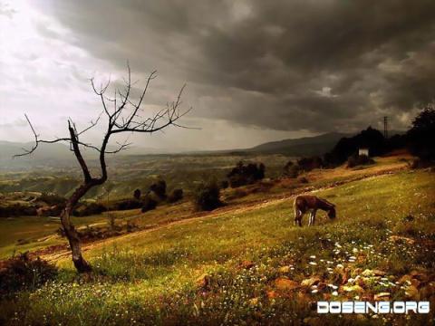 Молдавия (18 фото)