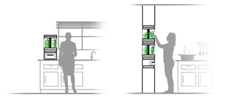 Персональная гидропонная система на кухне