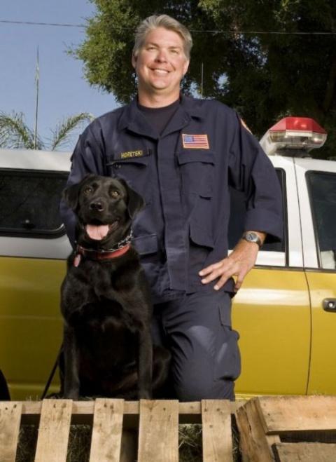 7 собак из приюта ,которые спасли жизни людей