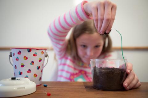 Грязные занятия по физике, химии и биологии для детей и не только