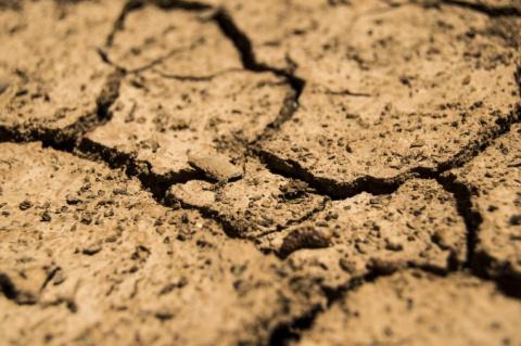 Перемена климата может ускор…