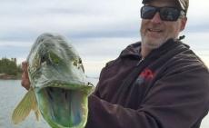 Канадский рыбак выловил необычную щуку
