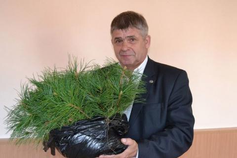 Подрубили мечту:  На сахалинского лесовода-энтузиаста подали в суд… за создание кедрового питомника