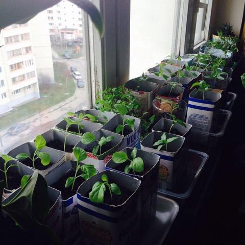 24 вещи, которые можно найти в доме у любой российской бабушки