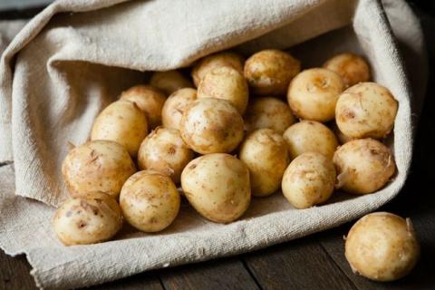 Молодой картофель в июне на Северо-Западе