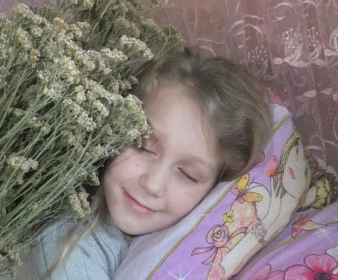 Как сделать лечебную подушку из трав