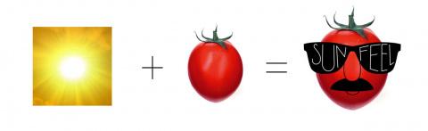 Овощи в очках рекламируют марку консервированных продуктов