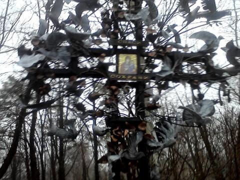 Донецк – развитие искусственного интеллекта на территории бывшей Украины, или летят утки...