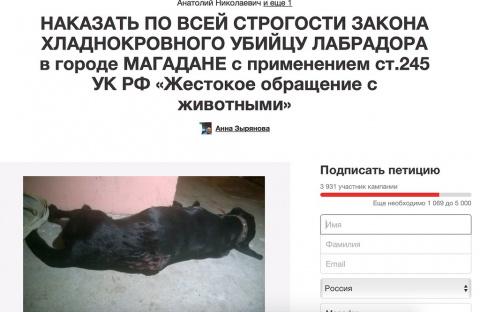 Страсти по убиенному лабрадору(