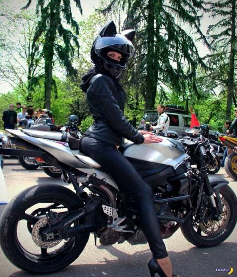 Мотокошечки по-российски