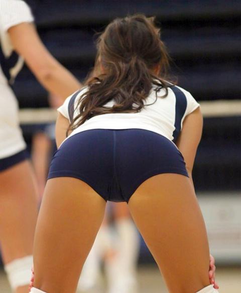 Привлекательные волейболистки