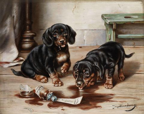 Трогательные и смешные животные от Carl Reichert