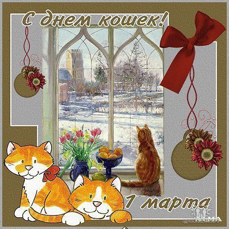 день кошек 1 марта открытки анимация можете узнать
