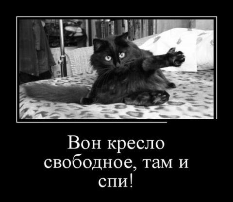 Реально веселые картинки)