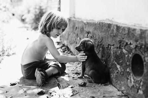 Мальчик и щенок. История из жизни…