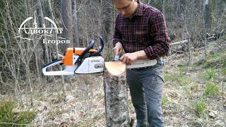 Лесные Тиски из пня. Заточка пилы