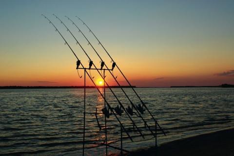 Снаряжение и снасти «карпятника» для ловли на течении