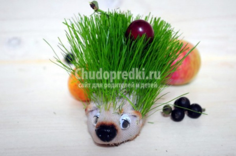 Травянчик из детского носочк…