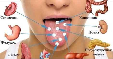 Диагностируем болезни по языку