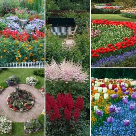 Яркие цветники (подборка идей)