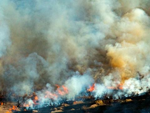 Девятилетний мальчик спас из огня троих детей и потерял мать