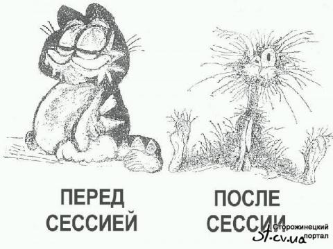 Умом Россию не понять: школьная пора