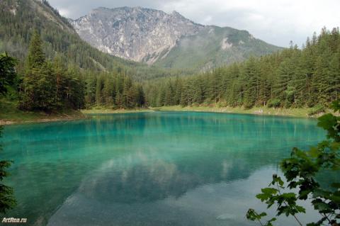 Подводный сад в Альпах!