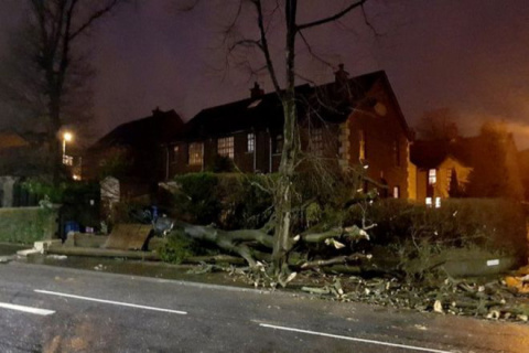 Дикая буря в Голландии буквально уносит людей в небо. Реальное видео!