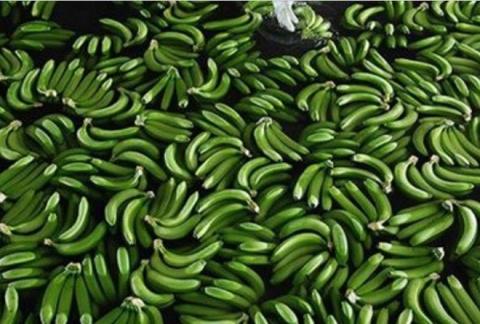 Вот как бананы попадают с пл…