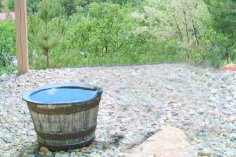 Камера зафиксировала интересную причину пропажи воды из бочки