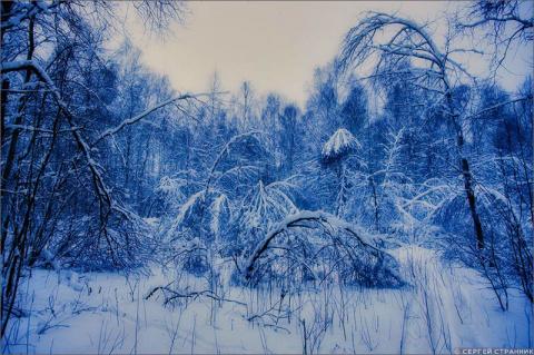 Искусство русской зимы