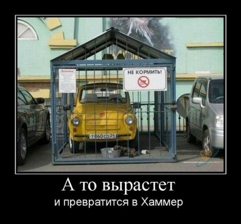 http://mtdata.ru/u26/photoC6A4/20056432348-0/big.jpeg